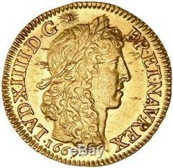 Louis XIV Louis d'or Juvénile lauré 1667 Paris très rare Splendide