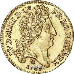 Louis XIV Louis d'or au soleil 1709 Toulouse Superbe exemplaire très rare