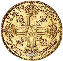 Louis XIV Splendide Louis d'or juvénile tête laurée 1667 Paris très rare