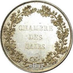 O5726 Très rare Médaille Louis XVIII Chambre Pairs Andrieu Desnoyers Argent SUP